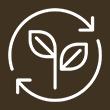 Gestion durable et environnementale des forêts