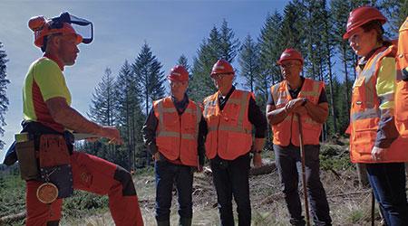 Formations pour les salariés du secteur forestier